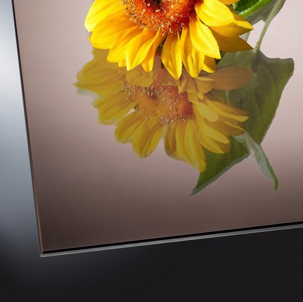 4 mm Spiegel Bronze
