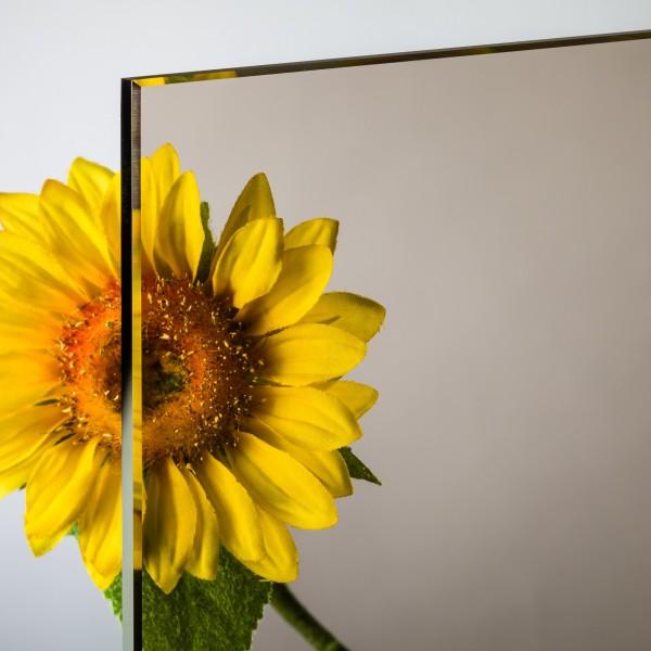 6 mm Float / Normalglas Bronze
